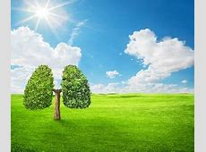 Clean Air for a Sustainable Future – UNECE Air Convention