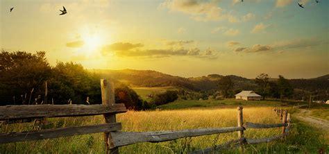 Summer Dream meditation for unguided visualisation | Meditainment