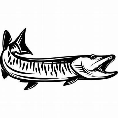 Svg Fishing Musky Fish Lures Fly Clipart