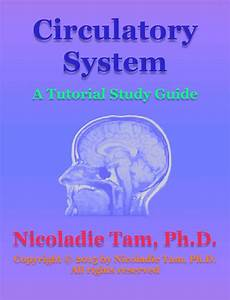 Read Circulatory System  A Tutorial Study Guide Online By