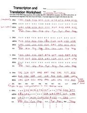 Transcription and translation practice worksheet answer key. Practice 1 KEY - Transcription 8 Translation Summary For each example a ll in the complimentary ...