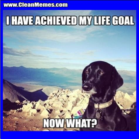 Goals Meme - funny relationship goals memes
