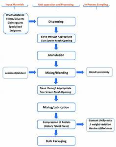 Process Flow Diagram Which Highlights Various Steps During