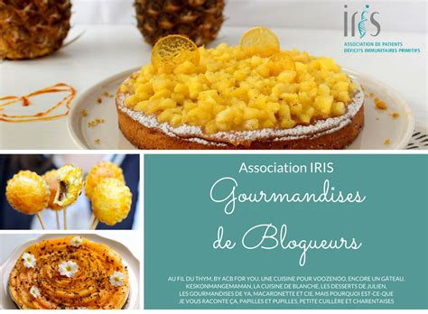 une cuisine pour voozenoo quot gourmandises de blogueurs quot pour l 39 association iris une
