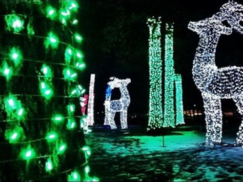 last chance to see lights at the detroit zoo patch
