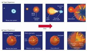 Minkowski and Walter Baade studied supernovae and divided ...