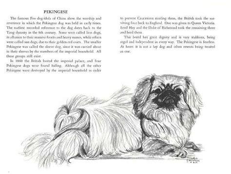 images  pekingeses  pinterest names dog