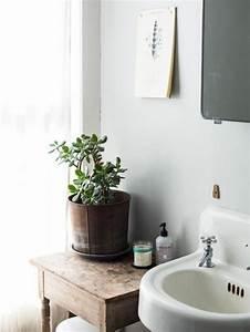 Zimmerpflanze Für Badezimmer : sukkulenten f r drinnen der gr ne blickfang im innenraum ~ Michelbontemps.com Haus und Dekorationen