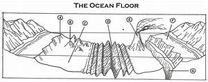 The Ocean Floor Worksheets In 2020