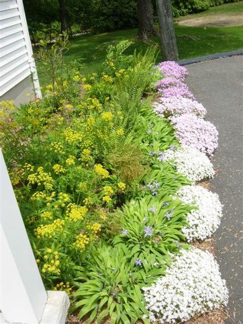 perennial garden design driveway border contemporary