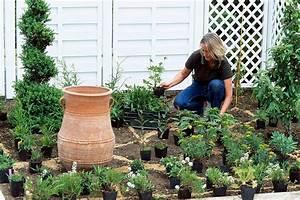 Plantes Vivaces Pour Massif : cr er un massif de vivaces d tente jardin ~ Premium-room.com Idées de Décoration