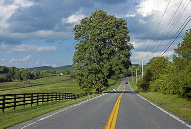 Wikipedia:Featured picture candidates/New York State Route ...