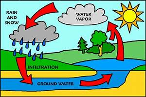 Shaikha U0026 39 S Portfolio  Water Cycle Explanation