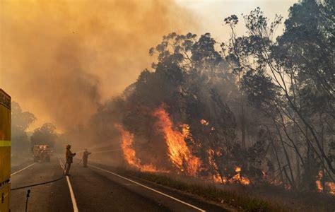 australian bushfires center  disaster philanthropy
