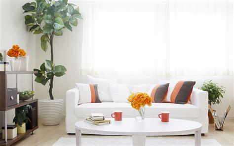 home interior design photos free green interior hd of living room
