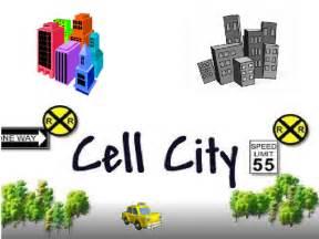 Nucleolus Cell City Analogy