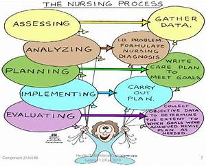 What Is Nursing