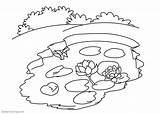 Coloring Pond Pages Printable Water Lily Template Flowers sketch template