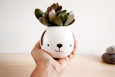 Dog Ceramic Succulent Planter Cute Animal Planter Face Plant