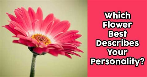 flower  describes  personality quizdoo
