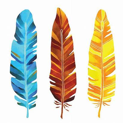 Feathers Turkey Hand Watercolor Vector Painted Clip