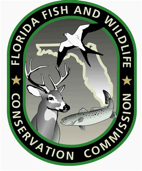 florida wildlife fish conservation commission fwc category