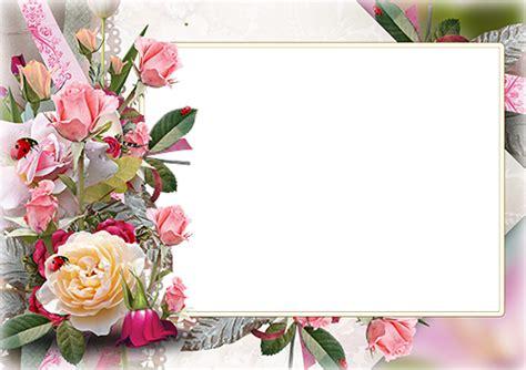 photo frames roses   garden