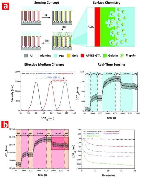Nanomaterials | Free Full-Text | Nanoporous Anodic Alumina ...