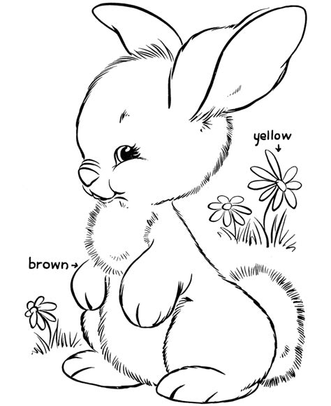 Color Pages Easter by Free Printable Easter Bunny Coloring Pages For