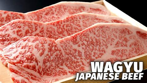 japan s most expensive beef wagyu