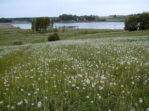 Fakti par Latvijas ezeriem! - Spoki