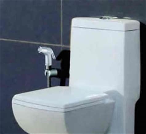 Bidet Shower  Stomawise  The Uk Support Network For