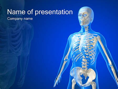 Human body powerpoint template costumepartyrun powerpoint templates free download digestive system image toneelgroepblik Images