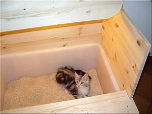 Pendeltür Selber Bauen : karlie katzentoilette smart cat mit dach grau 52 x 39 x 41 cm prima ~ Orissabook.com Haus und Dekorationen