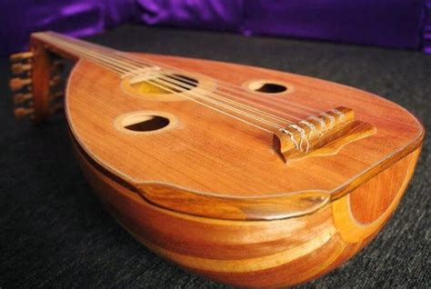 Contoh alat musik yang digoyangkan/digetarkan diantaranya yaitu angklung. Gambar alat musik Gambus