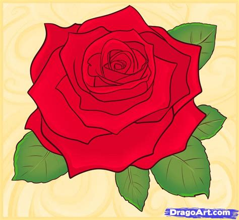 How To Draw A Realistic Rose Draw Real Rose Step By Step