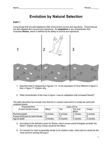 Worksheet Natural Selection Worksheet Grass Fedjp Worksheet Study Site