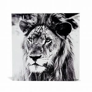 Tableau Lion Noir Et Blanc : 46 best images about fame de corday on pinterest showgirls lockets and perfume ~ Dallasstarsshop.com Idées de Décoration