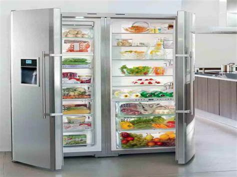 Appliances & Gadget : Full Size Refrigerator And Freezer
