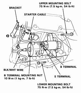 94 Acura Legend Engine Diagram  94  Free Engine Image For
