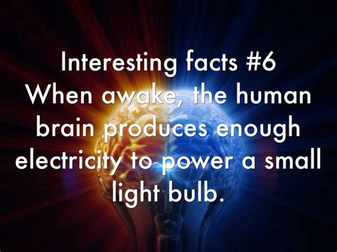 facts about light bulbs mouthtoears