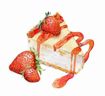 Cheesecake Strawberry Illustration Watercolor Jam Illustrations Vector