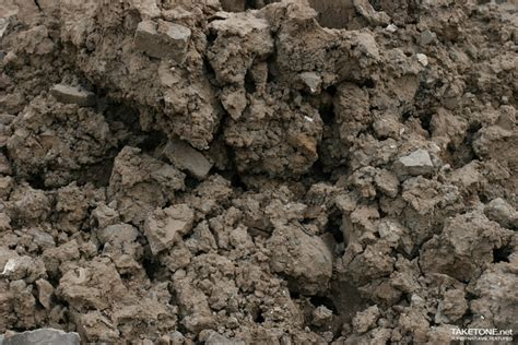 cuisine bio des fleurs pour terres lourdes ou argileuses