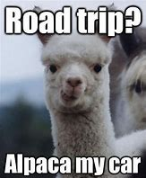 Image result for Animal Road Trip Memes