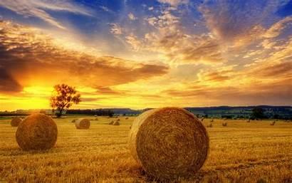Autumn Field Landscape Harvest Desktop Sunset Wallpapers