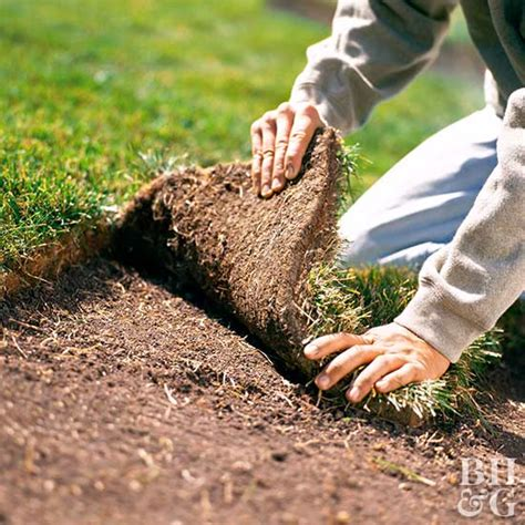 when to lay sod when is the best time to lay sod and what do i need to do to get it off to a good start