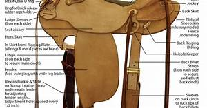 Diagram Of Western Saddle Parts