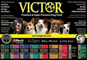 victor dog food review coupons ingredients nutrition With victor dog food