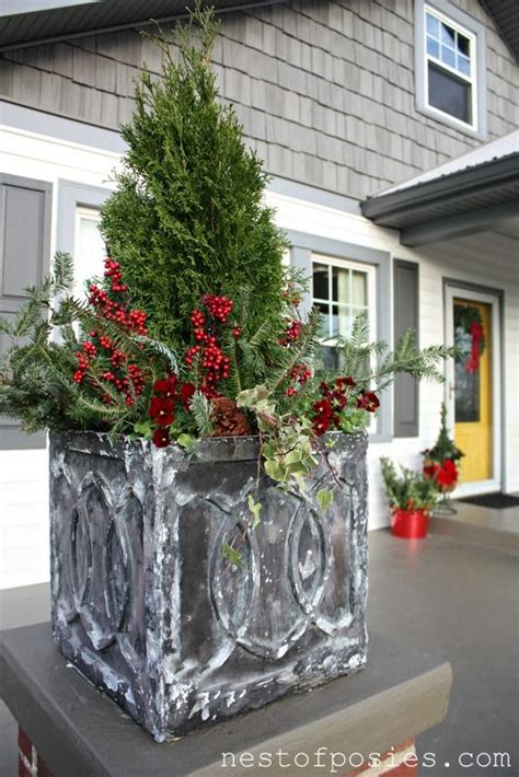 diy tips  winter flower containers container flowers