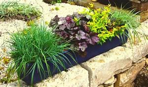 Balkonkästen Winterhart Bepflanzen : bepflanzter balkonkasten 80 cm wintergr n mit ~ Lizthompson.info Haus und Dekorationen